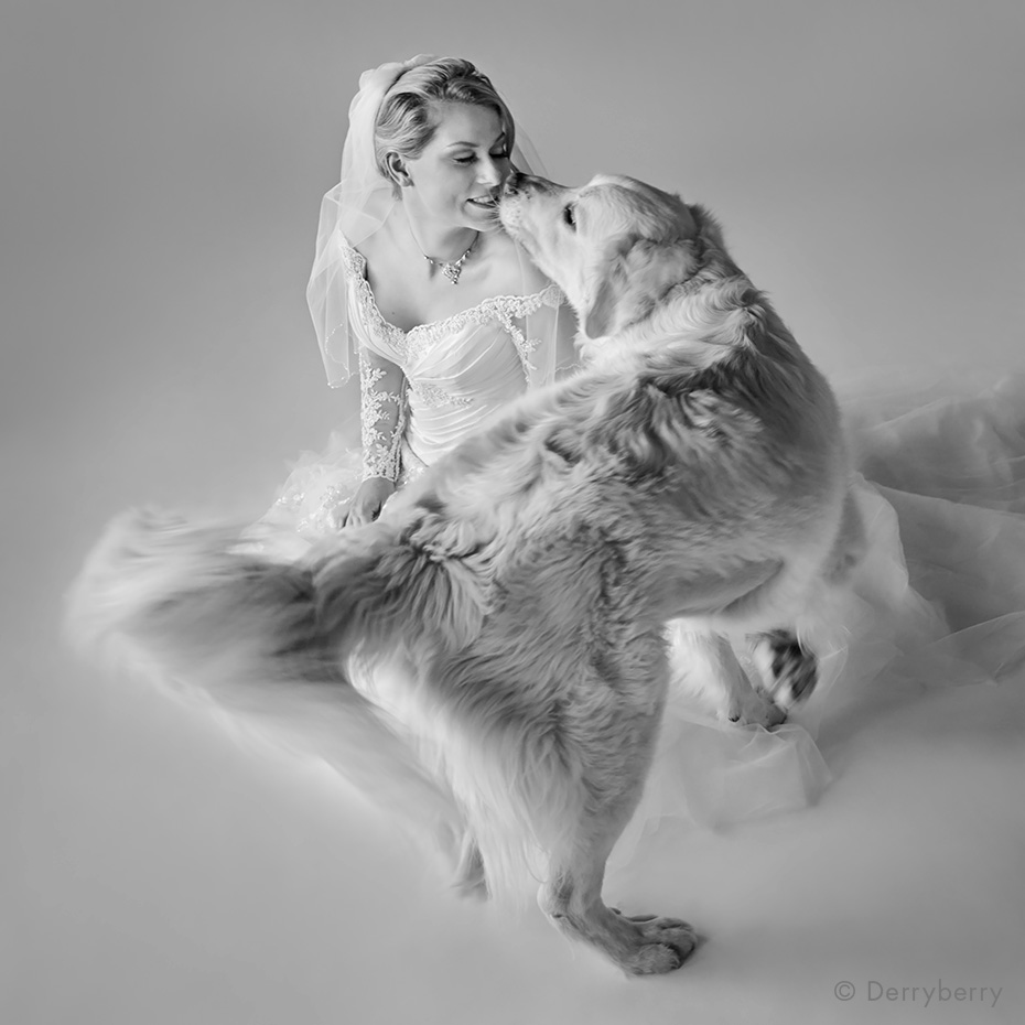 Black and white bridal portrait of a bride with her dog in the studio photographed by John Derryberry