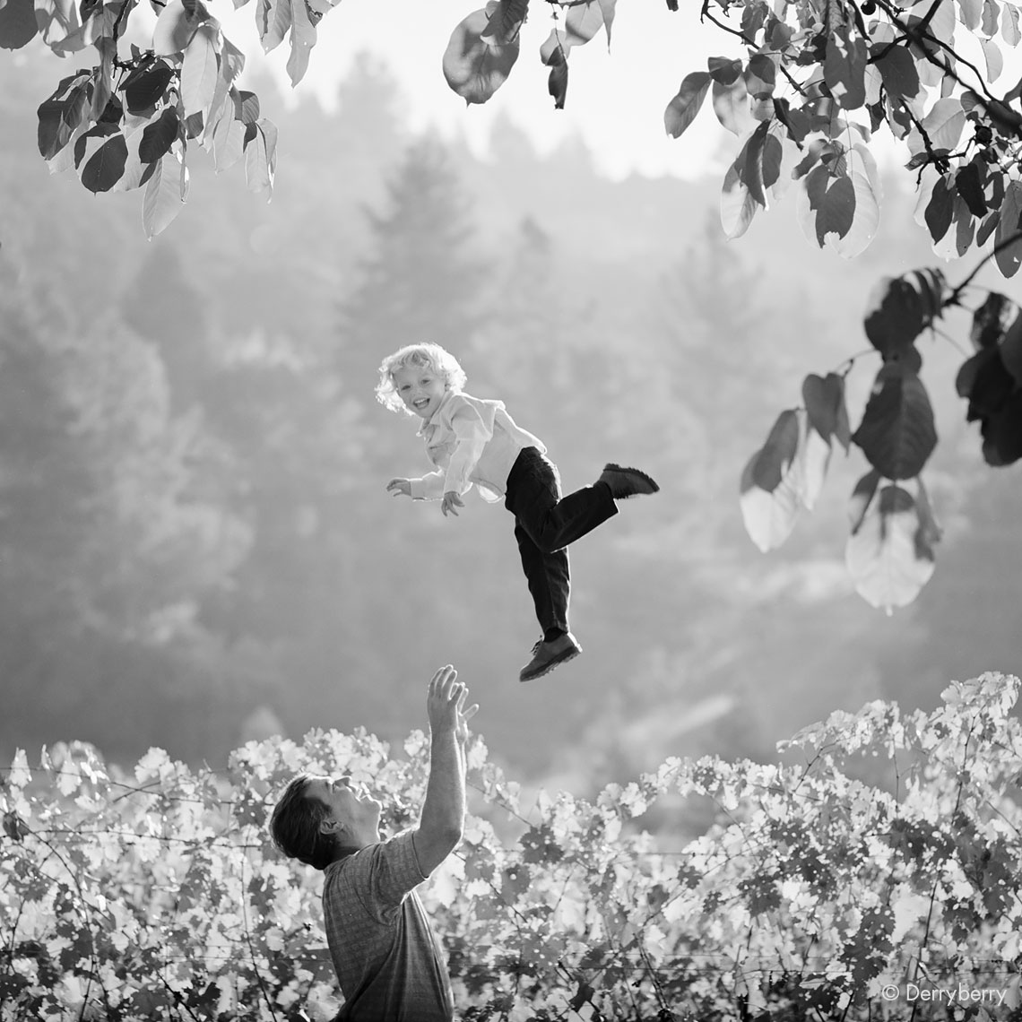 Black and white portrait of a laughing young boy being thrown high by his father in a Napa Valley vineyard